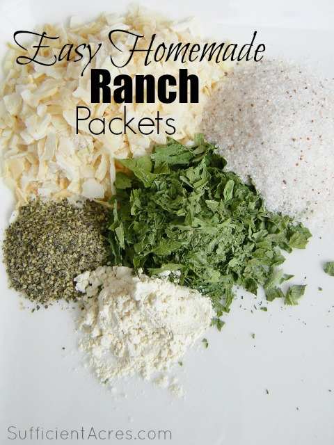 Easy Homemade Ranch Packets