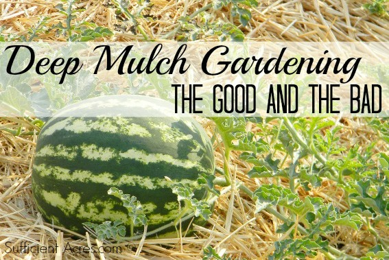 deep mulch gardening – the good and the bad, Garten ideen