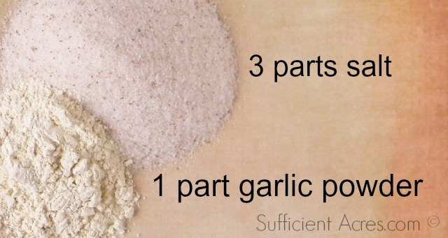 salt and garlic powder