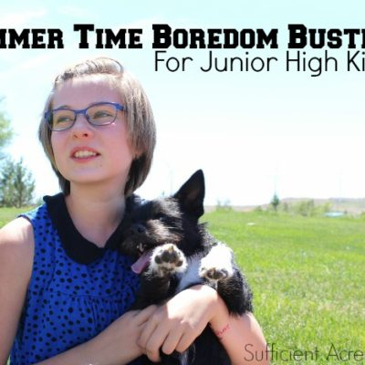 Summer Time Boredom Busters For Junior High Kids
