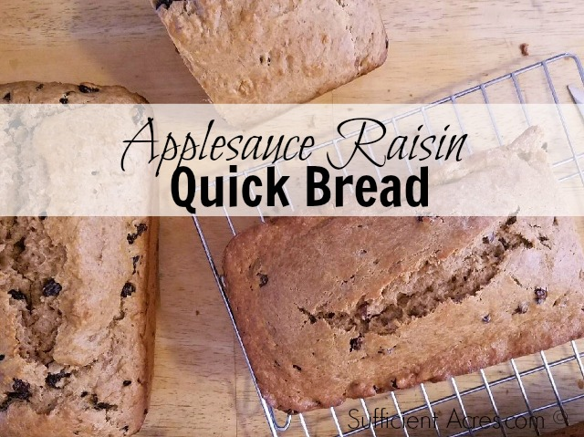 Applesauce Raisin Quick Bread